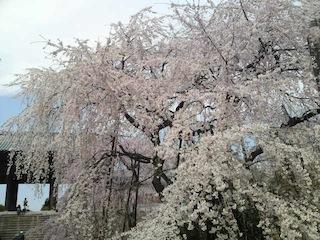 東郷寺.jpg